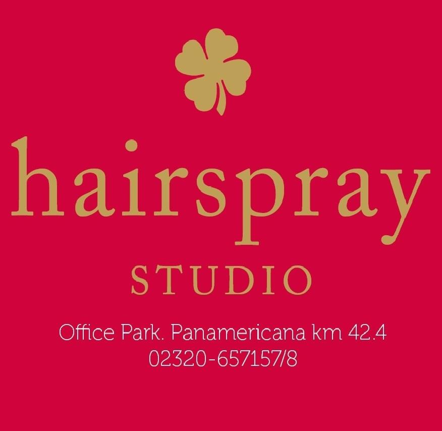 Logo Hairspray Studio