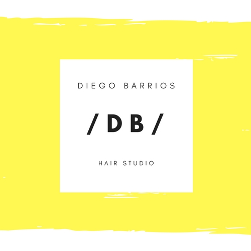 Logo Diego Barrios Hair Studio