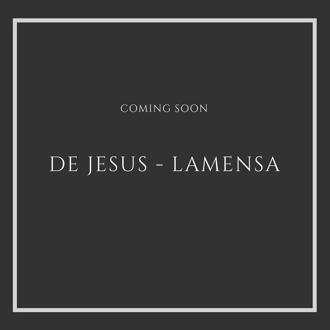 Logo DE JESUS - LAMENSA
