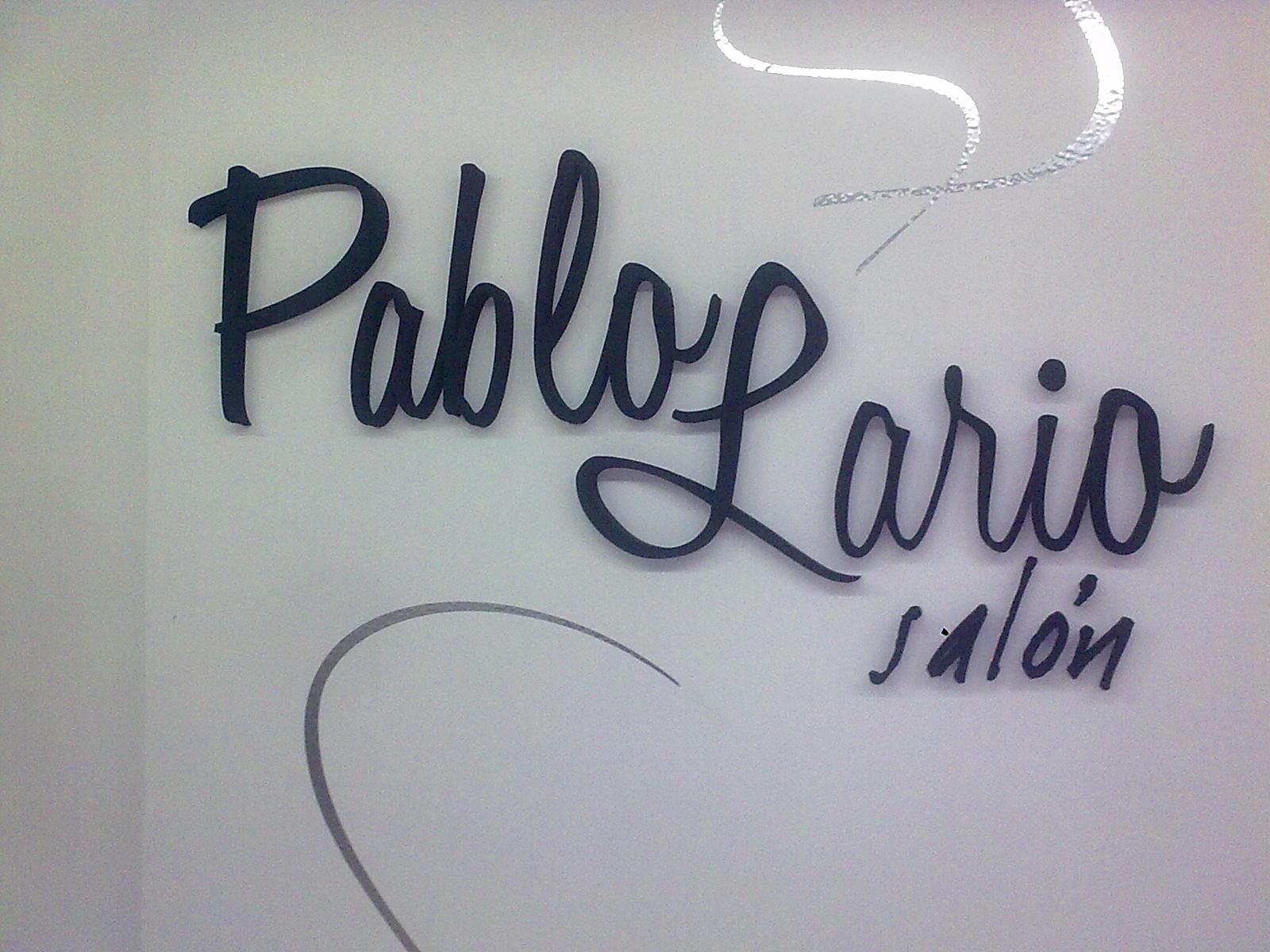 Logo Pablo Lario